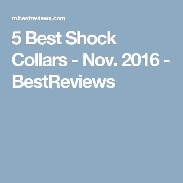 5 Best Shock Collars - Nov. 2016 - BestReviews