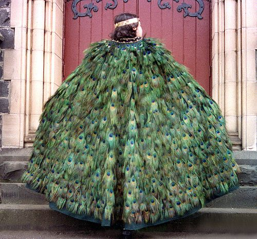 A peacock feather cloak, with fifteen hundred feathers incorporated into it. It took around three years to collect the feathers.