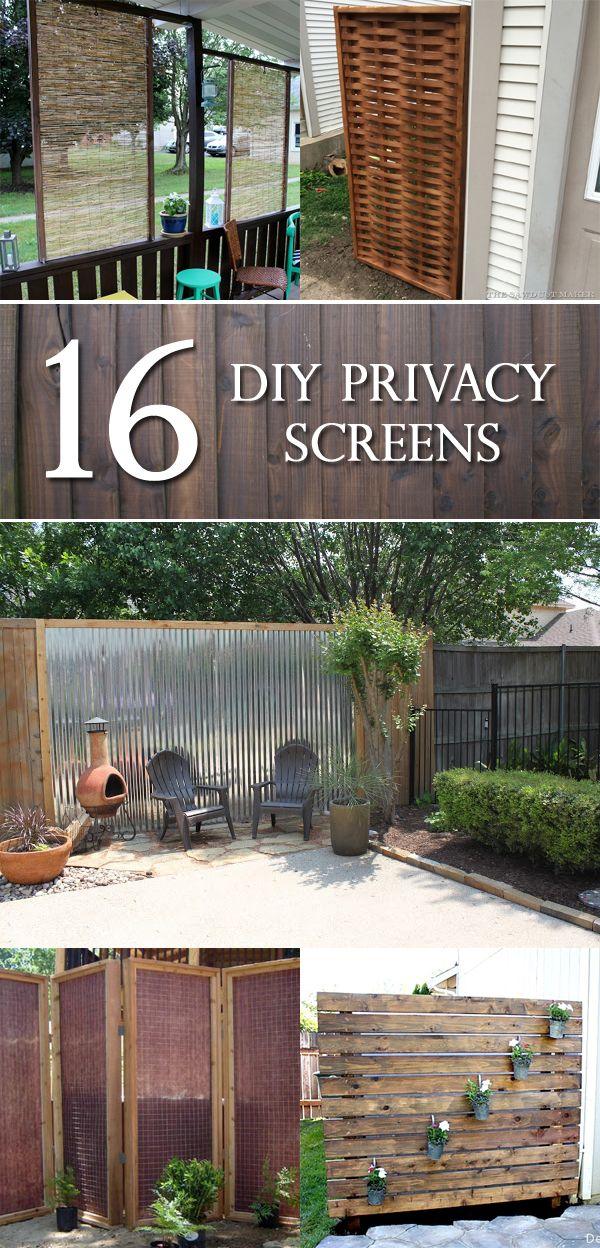 16 diy privacy screens that will make your space more for Backyard patio privacy ideas