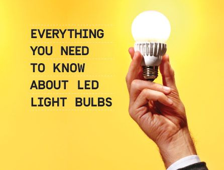 Everything You Need to Know About LED Light Bulbs ...