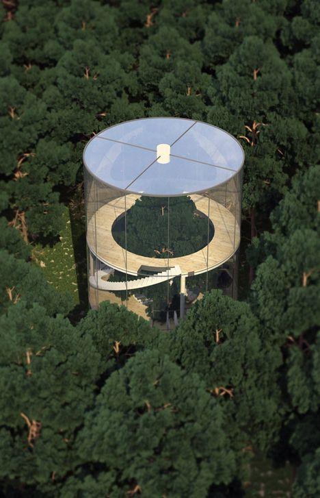 Tree House в: стъклен цилиндър Wraps пететажна Fir в Forest //: Tree House в: стъклен цилиндър Wraps пететажна Fir в Forest //