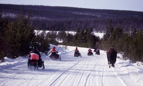 Snowmobile West Yellowstone