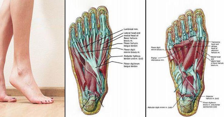 Diese 5 Fußübungen können Rücken-, Hüft- & Knieschmerzen lösen (in unter 20 Minuten)