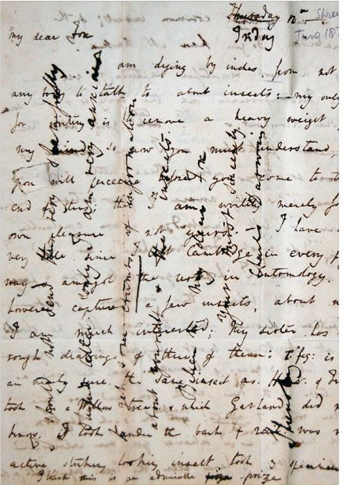 Charles DARWIN. Cross writing (technique used for saving paper), 1828