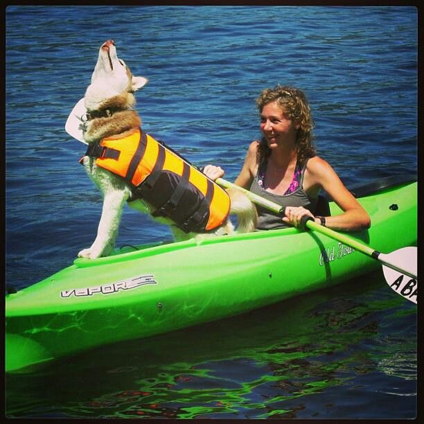143 best images about kayak dogs on pinterest for dogs for Sea fishing kayak