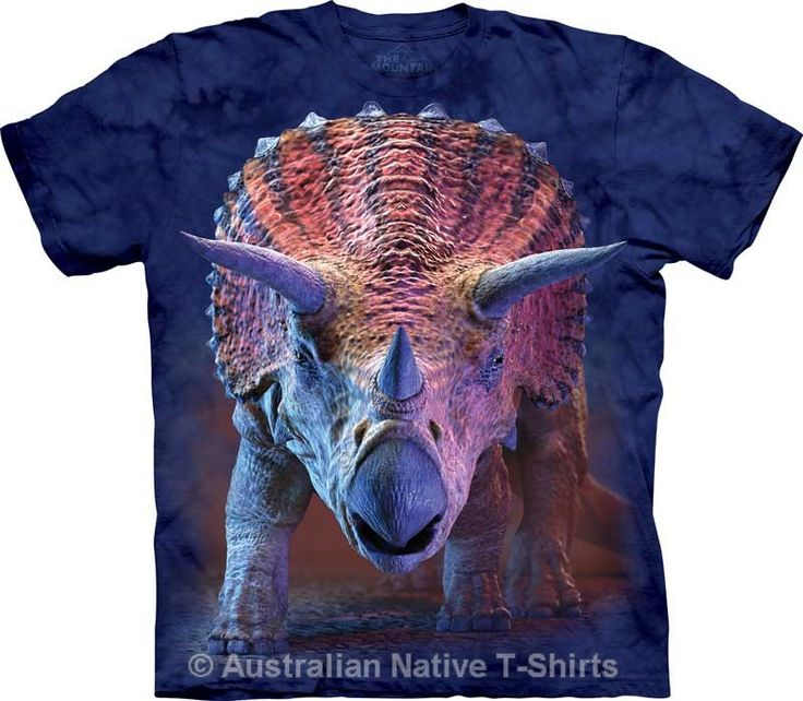 Charging Triceratops Childrens Dinosaur T-Shirt