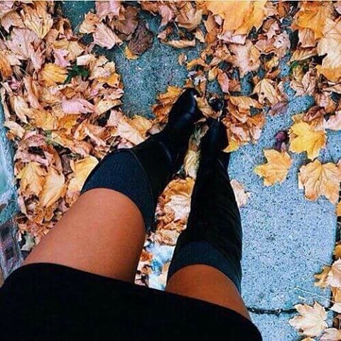 Fall boots 🍂