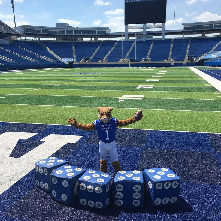 #bbn, we want to play a bunch of Yahtzee. If we reach 40,000 @ukfootball season tickets, one lucky section of fans at each home game will play Yahtzee for a chance at free 2018 season tickets. Help us get there by buying your tickets if you haven't. If you already have, do your best Vince Marrow impersonation and recruit! #WeAreUK #gotowork