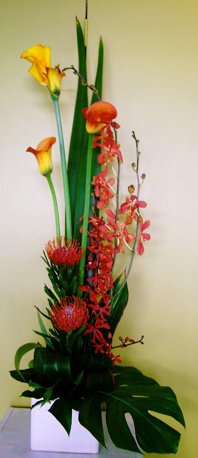 Arreglo moderno de Callas, Orquídeas y Protea Nutans con follajes tropicales: