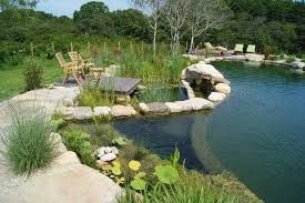 Image result for natural pool fencing nz