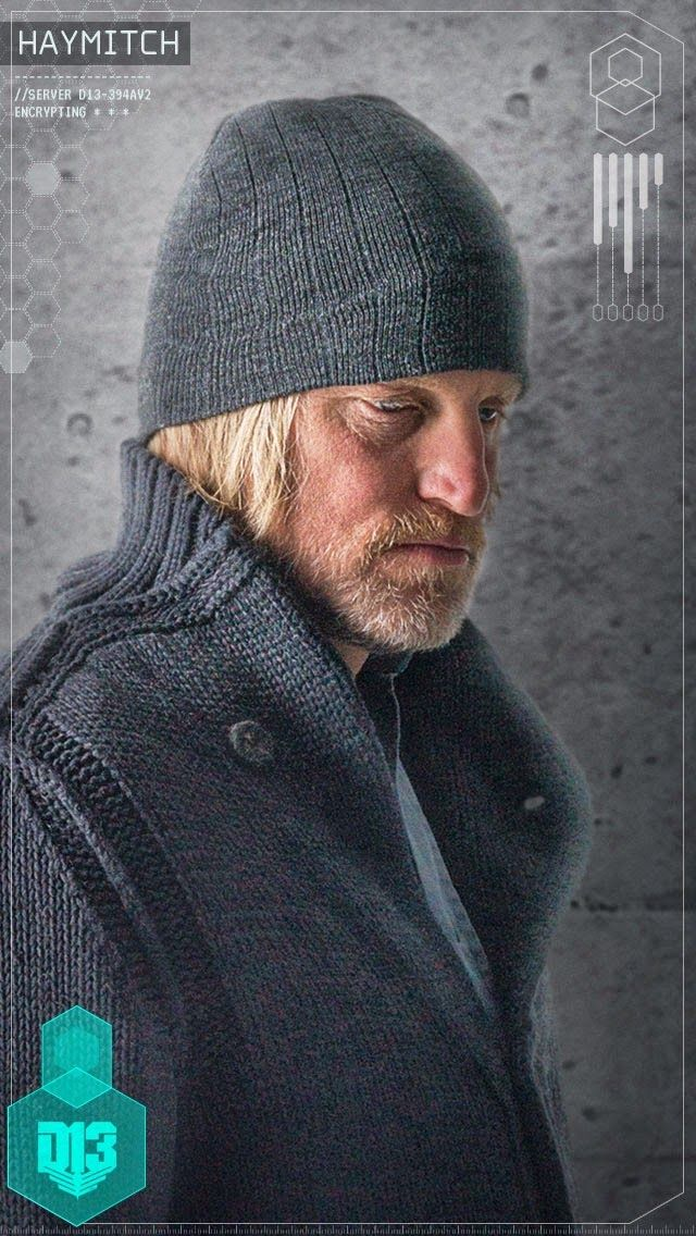 So about Haymitch's eye... I don't know if this was intentional or not, but is his eye sore because that was where Katniss slapped him at the end of Catching Fire?