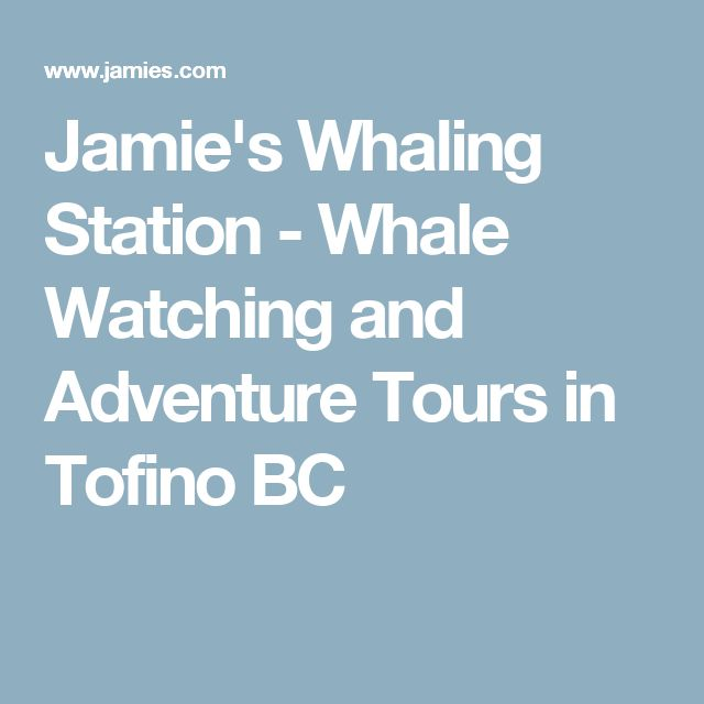 Jamie's Whaling Station - Whale Watching and Adventure Tours in Tofino BC