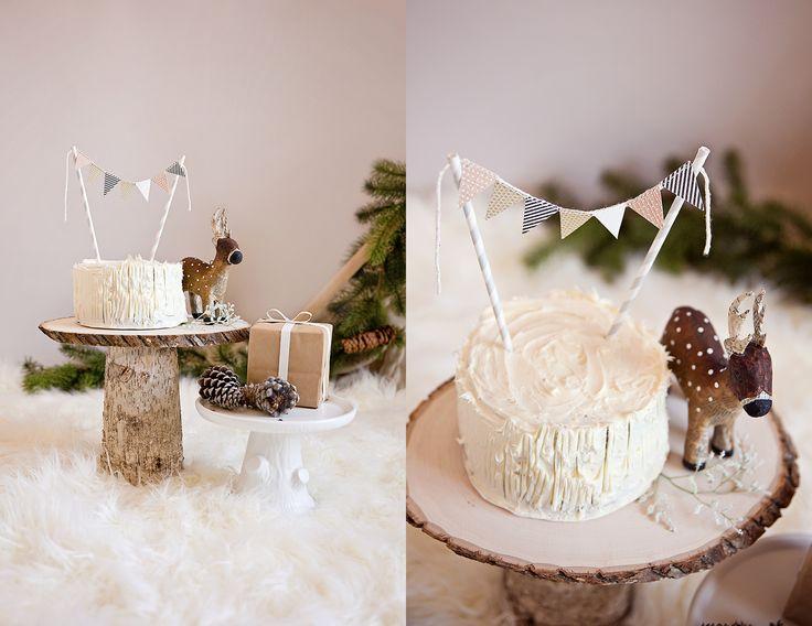 Winter wonderland cake smash