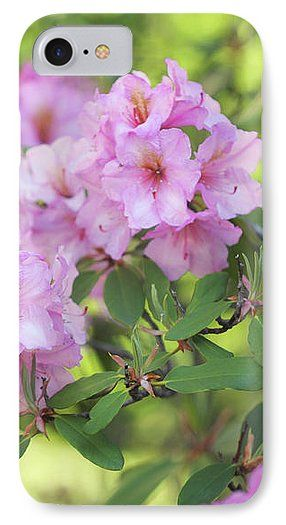 Jenny Rainbow Fine Art Photography IPhone 7 Case featuring the photograph Beauty Of Pink Rhododendron by Jenny Rainbow