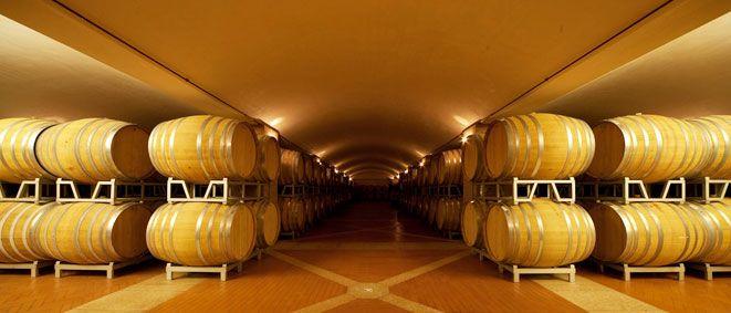 chardonnay santacristina2