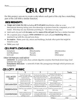 cell division worksheet 5th grade 1000 images about science worksheets on pinterest animal. Black Bedroom Furniture Sets. Home Design Ideas