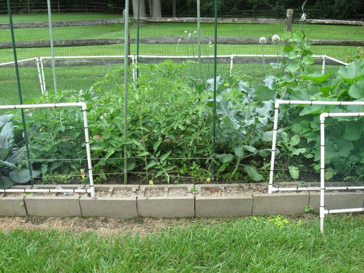 chicken wire fence one view how to build a garden