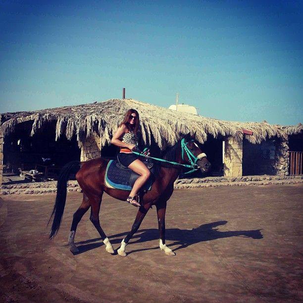 Instagram media by zeynab555 - #Египет #ШармЭльШейх #пустыня #лошадь #❤️ #красноеморе # #