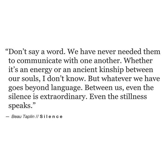 Don't say a word, we have never needed them to communicate with one another. Whether it's an energy or an ancient kinship between our souls, ..I don't know. Bur whatever we have goes beyond language. Between us, ..even silence is extraordinary, ..even the stillness speaks. ~ Beau Taplin