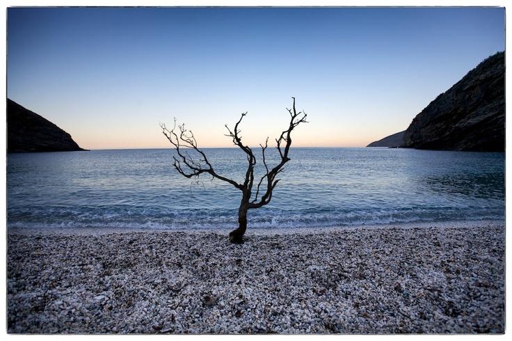 Evia Island, Greece (2012) (c) Aris Michalopoulos