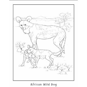 1000 images about endangered animals coloring book on for African wild dog coloring pages