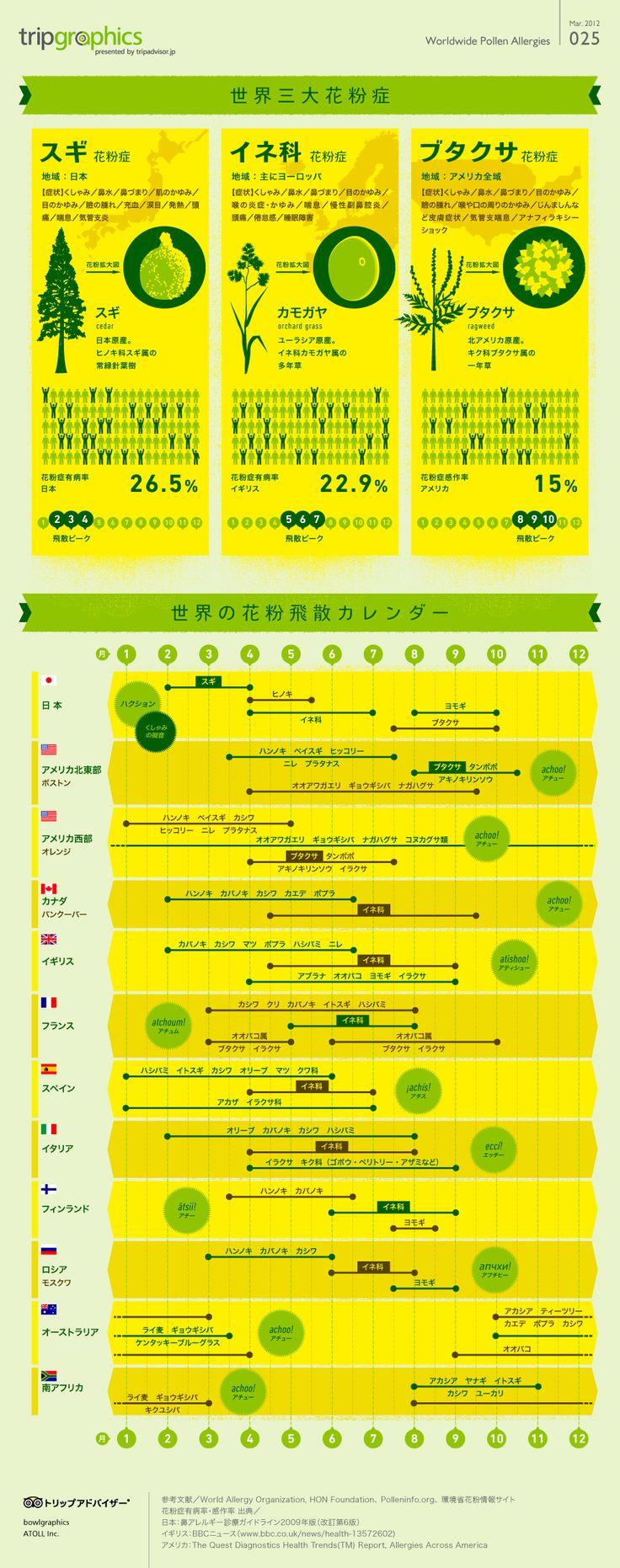 世界三大花粉症と世界の花粉飛散カレンダー トリップアドバイザーのインフォグラフィックスで世界の旅が見える