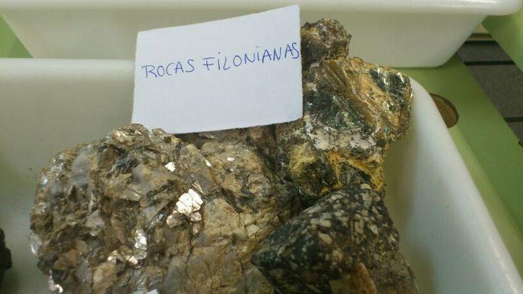 Rocas Filionianas