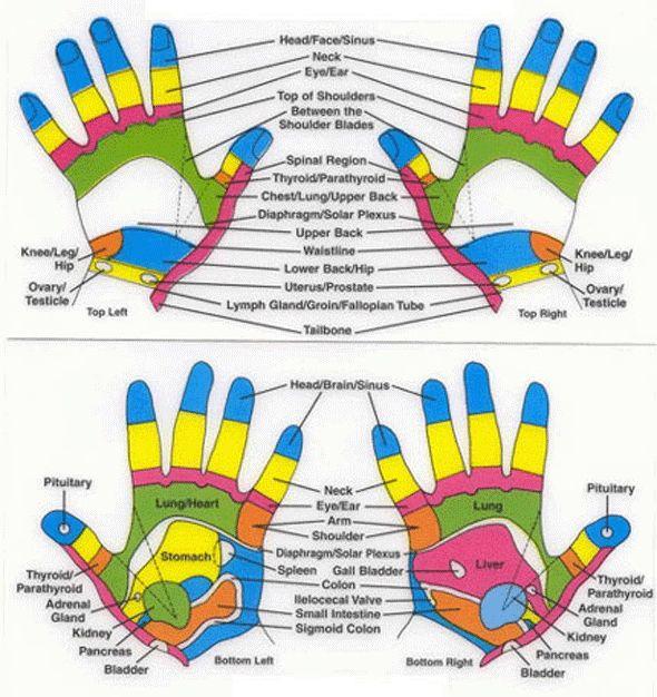 hands reflexology points