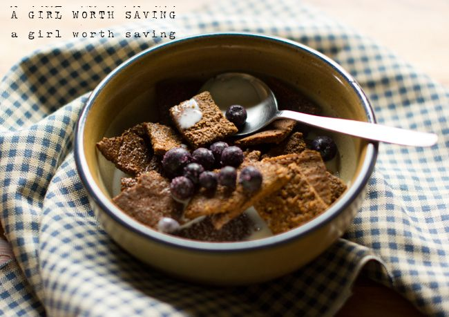 Paleo Cinnamon Square Crunch Cereal (use flax/chia egg and sweeten w/stevia)