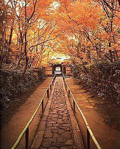 LE JAPON TRADITIONNEL - Temples et Palais