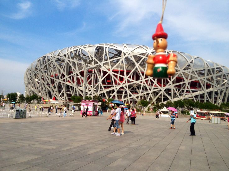Pinocchio is visiting a giant bird nest.