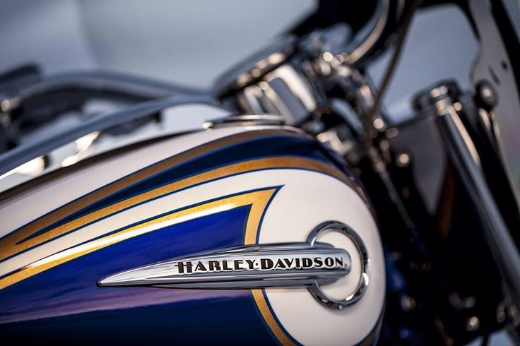 Eagle's Nest Harely Davidson; 2014 Softail Deluxe CVO paint job