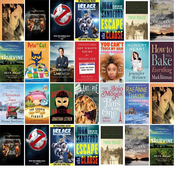 """Wednesday, October 19, 2016: The Northern Onondaga Public Library has 20 new bestsellers in the Top Choices section.   The new titles this week include """"Day Breaks,"""" """"Revolution Radio,"""" and """"Ghostbusters Blu-ray/UV."""""""