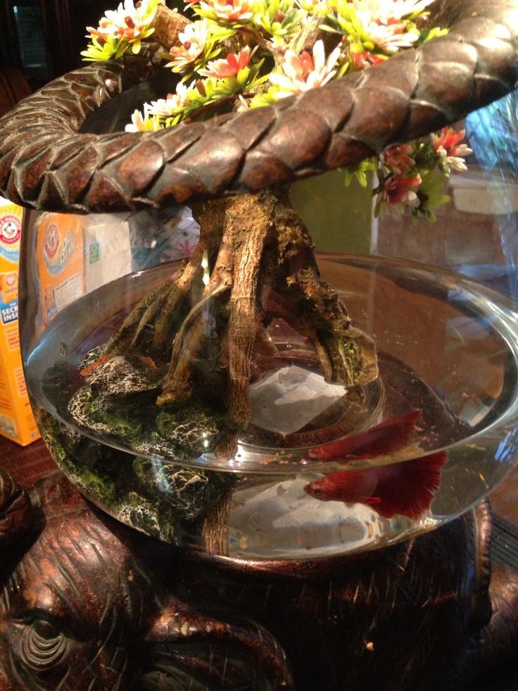 116 best fun fish tanks images on pinterest for Fun fish tank