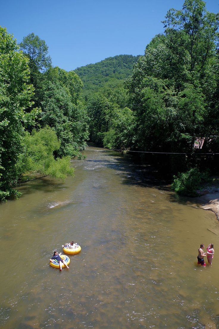 25 best ideas about green river on pinterest chicago for Fishing in asheville nc