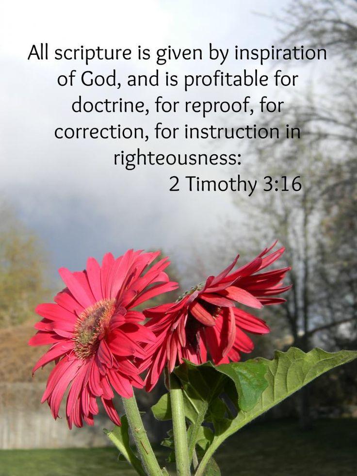 2 Timothy 3:16 KJV. ~  Amen!  All Scripture is God Breathed ...