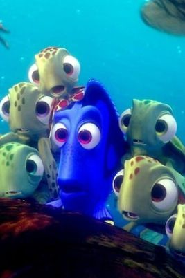Dory and the little turtles, Finding Nemo