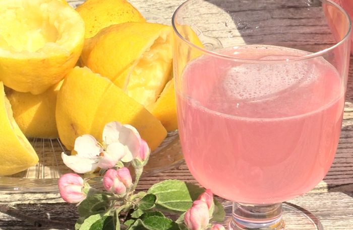 Bjud på läskande rosa lemonad – så här enkelt gör du den