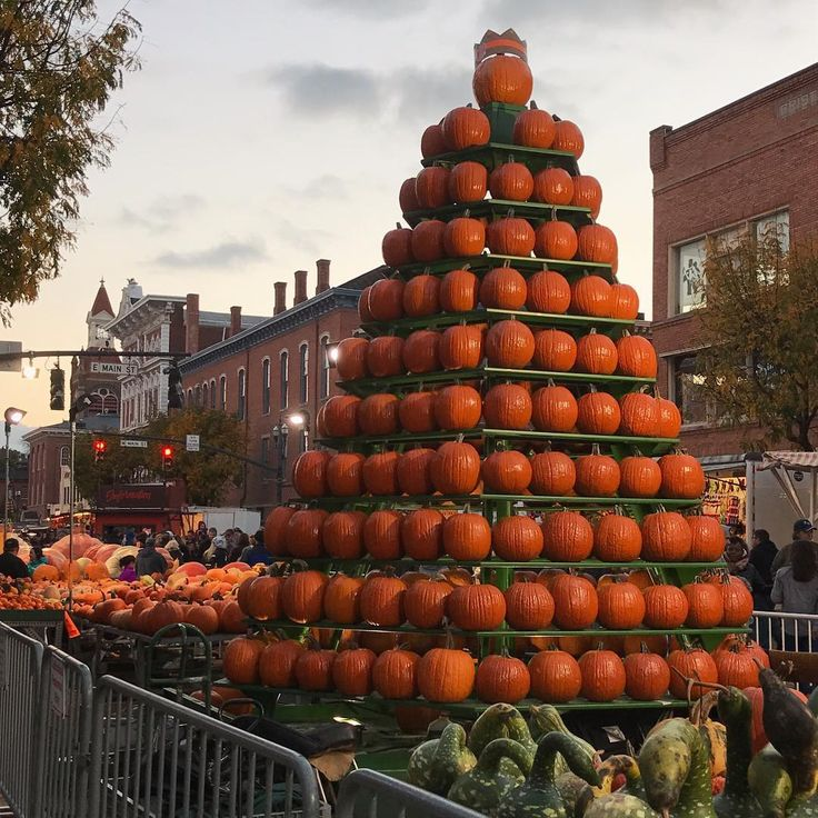 """187 Likes, 2 Comments - Emily (@emilydelong) on Instagram: """"110th Circleville Pumpkin Show! 🎃"""""""