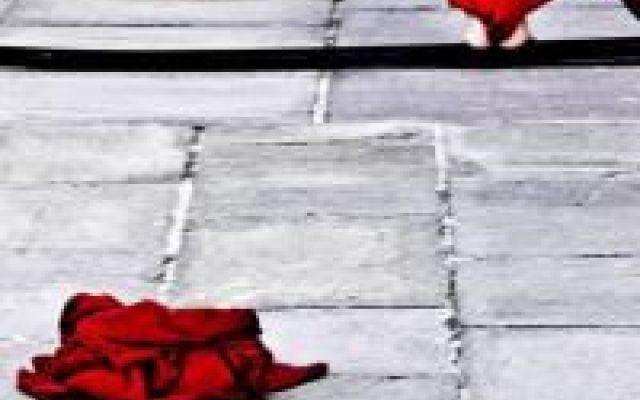 Sophia, una mostra fotografica sul femminile Istinto e passione, carne e spirito. Riflessi della stessa luce: quella che illumina la nostra parte femminile che è tempo di riscoprire. Ci sono molti modi per rappresentare il femminile, ma uno sol #ericafortunato #fotografia #femminile