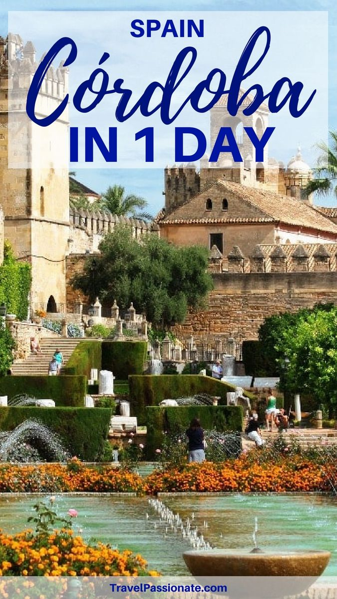 An itinerary on how to spend 1 day in Cordoba, Spain including things to in Cordoba and what to eat. Click through to read more