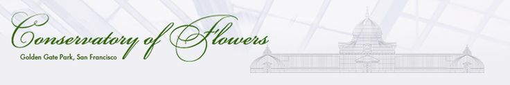 Conservatory of Flowers.  Golden Gate Park, SF. 10 am- 4pm.  Free First Tuesday.