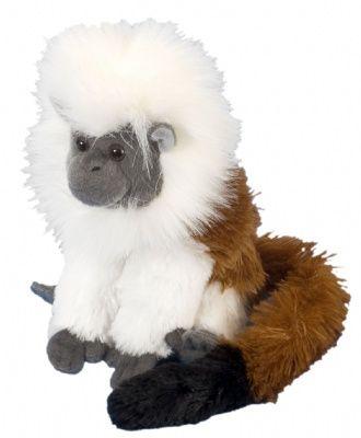 Mini Cottontop Tamarin Cuddlekins at theBIGzoo.com, an animal-themed superstore.