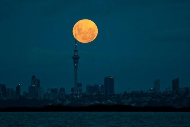 """The """"supermoon"""" rising above Auckland, New Zealand last night"""