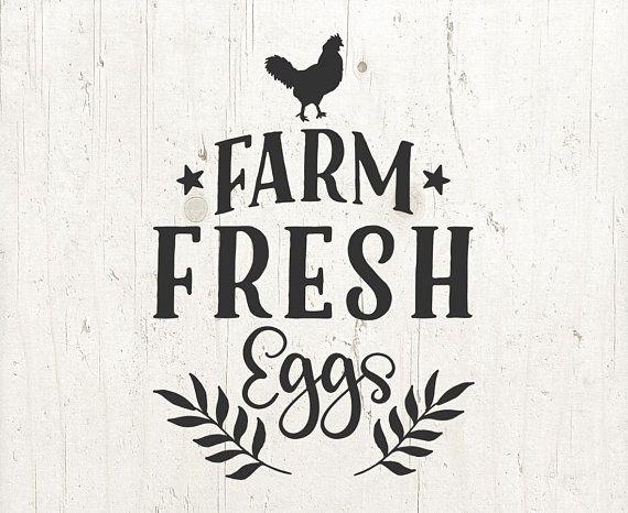 Farm Svg Farm Fresh Eggs Svg Farm Fresh Eggs Farmhouse Etsy Farm Fresh Eggs Farm Fresh Eggs Sign Farm Fresh