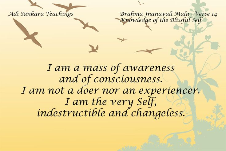 Brahma Jnanavali Quote 14 Adi Sankara Teachings Brahma Jnanavali Mala - Verse 14 Knowledge of the Blissful Self I am a mass of awareness and of consciousnes