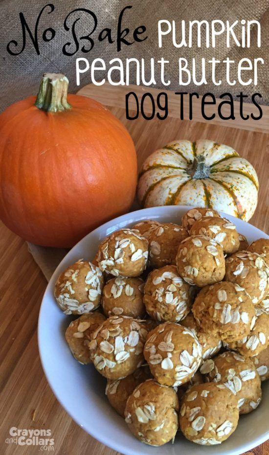 No baking required! These pumpkin peanut bitter dog treats look tasty for your pup!