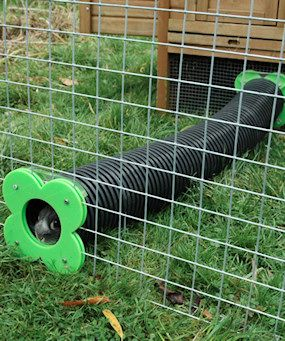 There's lots of pics of these--some are buried underground so the little guys can pretend to tunnel. Oh dear it's so adorable