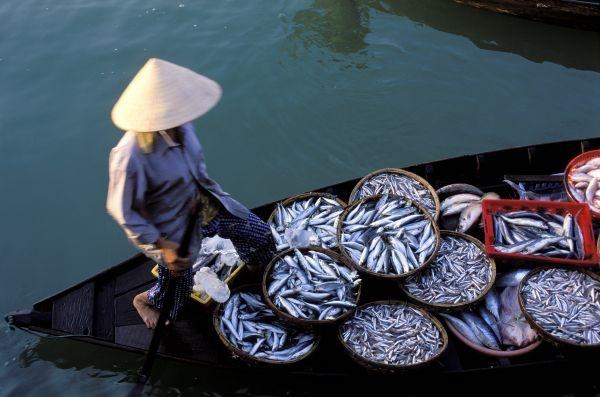 Voyage Vietnam sur mesure, sejour Vietnam a la carte - Voyageurs du Monde