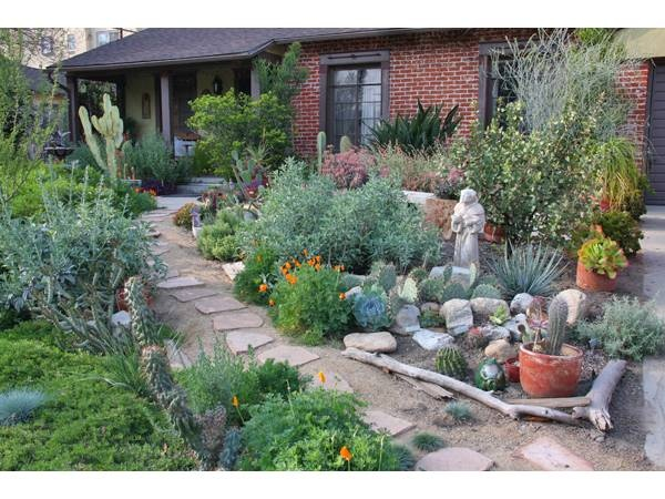 xeriscape yard ideas 85 best xeriscape images on pinterest garden ideas gardens and